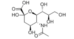 N-Acetylneuraminic Acid Structure