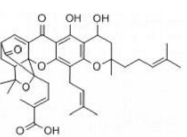 Gambogenic acid Structure