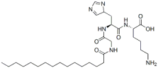 Palmitoyl oligopeptide Structure