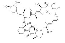 Rapamycin Structure